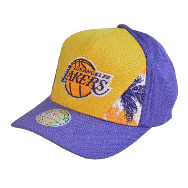 93a1bbde Mitchell & Ness NBA Los Angeles Lakers Snapback -  MN-HWC-INTL319-LALAKE-YELPUR-OS - KicksDistrict.co.uk